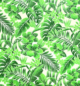 PAB0909_Green