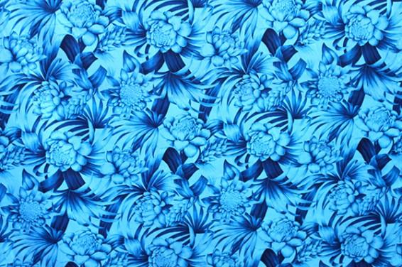 PAB0911_Blue