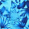 PAB0911_Blue_ZZ