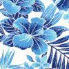 PAB0915_Turquoise_ZZ
