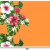 PBB2658_Mango_1