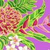 PBB2660_Lavender_ZZ