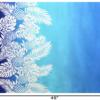 PBB2959_Blue_1