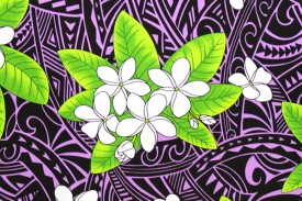 PAC1397 Purple