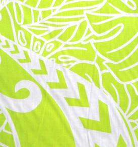 PAC1403 Green Kiwi