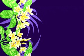 PBB2662_Purple
