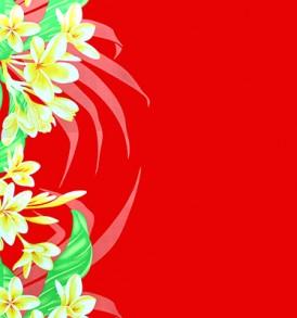 PBB2662_Red