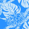 PBC0655_BlueTurquoise_ZZ
