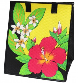 HTPBL0308 – Large Insulated Bag