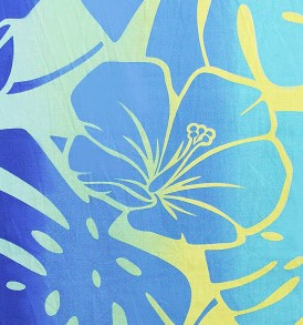 PAB0936 Blue/Yellow