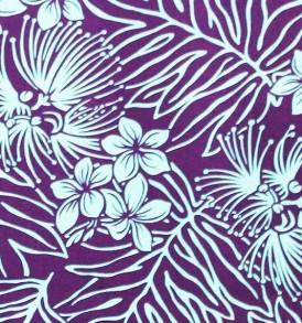 PAB0938 Purple/Turq