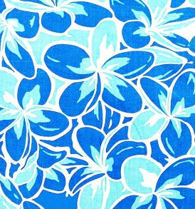 PAB0940 Blue/Natural