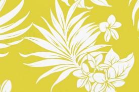 PAB0943 Yellow