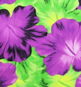 PAB0947 Purple/Green