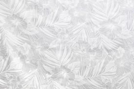 PAB0950-whitewhite_Z
