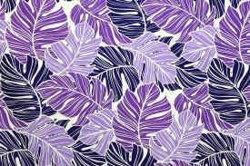 PAB0951-purplenatural_Z