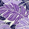 PAB0951-purplenatural_ZZ