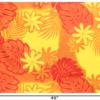 PAB0952-Orange_1