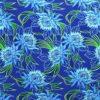 PAB0954-Blue