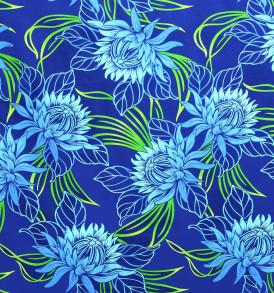 PAB0954-Blue_Z