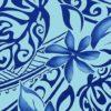 PAC1413-Blue_ZZ