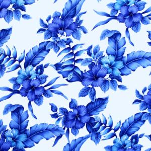 HR1524 White/Blue